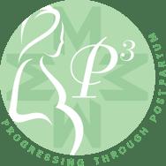 p3-logo-no-hypen